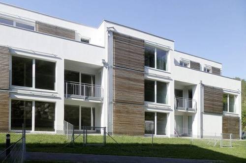 Traismauer. Geförderte 4 Zimmer Wohnung | Dachterrasse | Miete mit Kaufrecht.