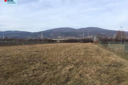 2352 Gumpoldskirchen - Grundstück in unmittelbarer Nähe zum Sportplatz