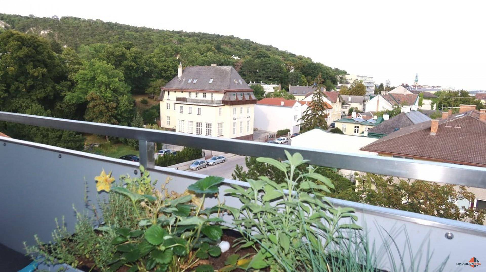 NÄHE DOBLHOFFPARK - Baden