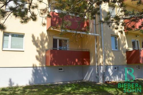 Platz für die ganze Familie! Ruhige, sehr gepflegte 4-Zimmer Wohnung mit Südbalkon und Grünblick