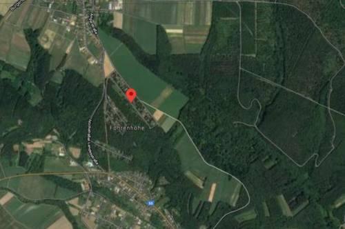 Pachtgründe in der Feriensiedlung Föhrenhöhe/Lockenhaus zu vergeben