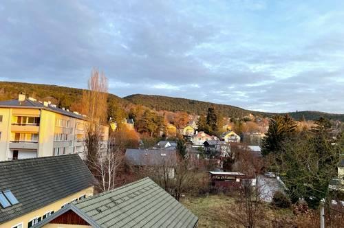 Baden, direkt am Rosarium: moderne Wohnung + Dachterrasse + Balkon + Wintergarten + KFZ-Stellplatz