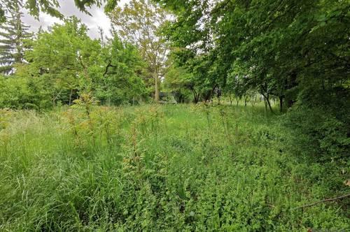 522m² Garten mitten in Langenzersdorf