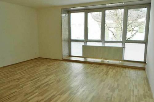 Neu adaptierte Wohnung im Herzen von Orth/Donau, Corona-Preis 4 Jahre !!!!!
