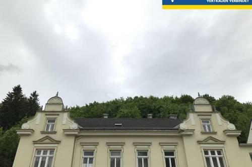Jahrhundertwende Villa mit Büro, Werkstatt, Garten und Wald