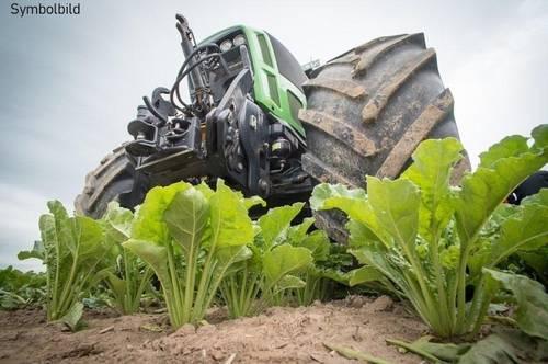 Landwirtschaftlicher Betrieb bzw. Reiterhofmöglichkeit in ebener Lage