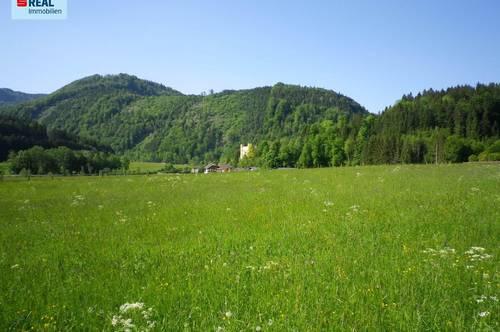 Sonniges Grundstück für Naturliebhaber im Salzkammergut