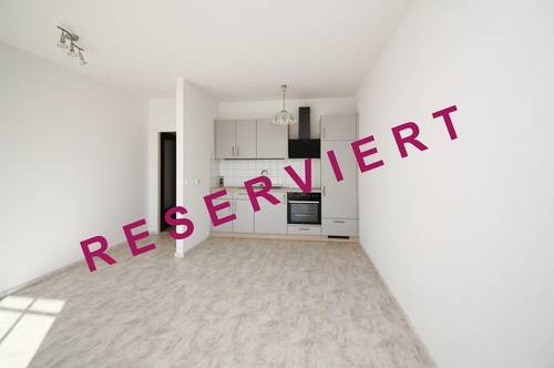 Sonniges Single-Appartement