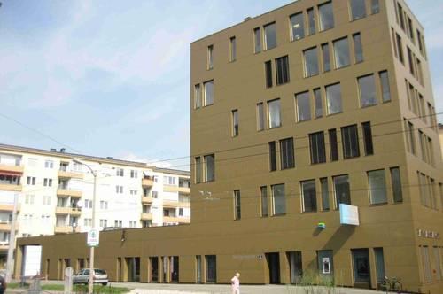 BUSINESS POINT PARSCH- 714m² Verkaufsfläche/Geschäftslokal + Nebenräume & TG-Stellplätze