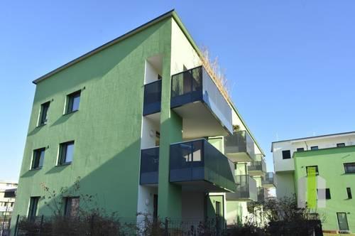 Moderne 3 Zi. Wohnung mit Balkon und TG Stellplatz an der Glan