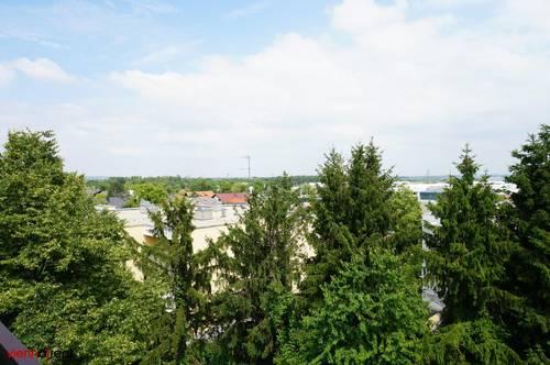 ruhige, gartenseitige DG-Wohnung mit Loggia und Grünblick - 3 zentral begehbare Zimmer und separate Küche