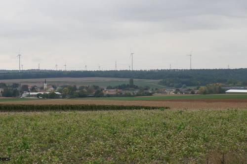 landwirtschaftliche Grundstücksfläche im Raum Göttlesbrunn-Arbesthal mit rd. 5,5 Hektar