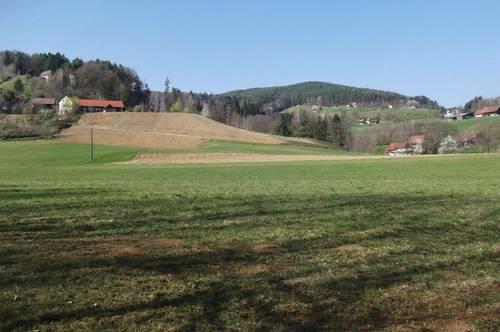 Beste, ebene Wiesen- und Ackerflächen (arrondiert). Zufahrt über öffentliches Gut. Grundfläche: ca. 5,6ha.
