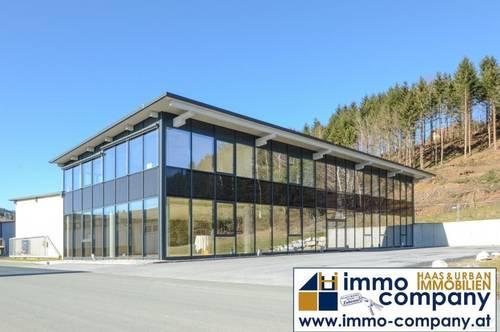 Büro - Geschäft - Praxis ... 20 bis 450 m2 im Licht-Spiele-Haus!!!!