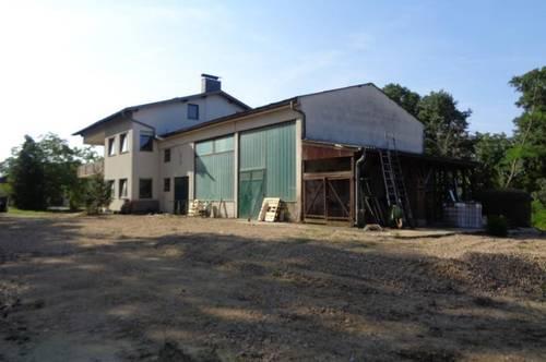 2-3 Familienhaus mit 11700m² Grund/ 2 Werkstatt- Hallen in Altenwörth!