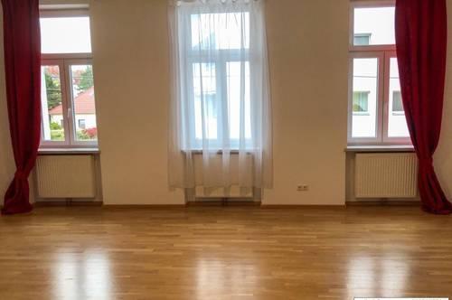 1210 Wien geräumige Mietwohnung 135 m2+ 14,8 m2 Terrasse