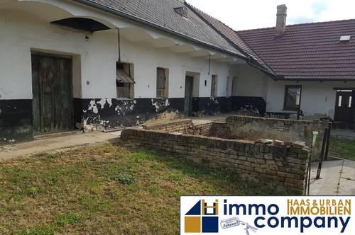 renovierungsbedürftiger Bauernhof mit Nebengebäuden