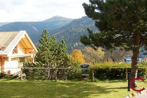 Urige Haushälfte mit schönem Gartenbereich in Obertschern