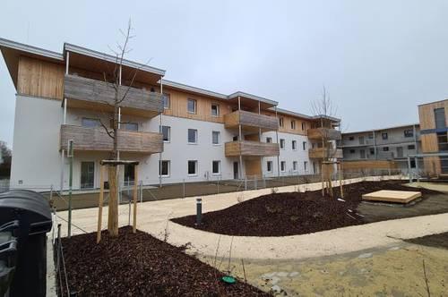 Seniorenwohnungen NEUBAU mit Betreuung in Wels/Lichtenegg, ab sofort zu mieten.