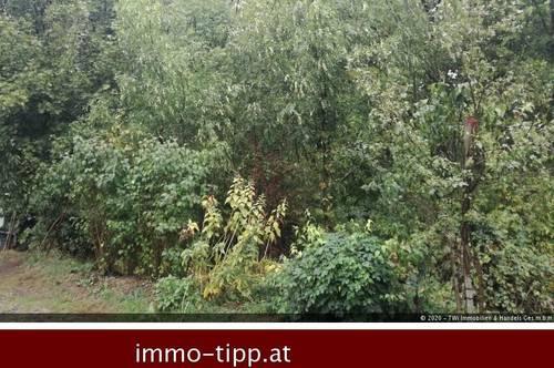 Idyllisches Grundstück in Baden