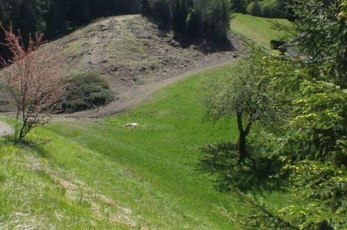 Schöner - barrierefrei gelegener Baugrund umgeben von ca. 5.500 m² Grundstücksflächen - ebenfalls als Bauland gewidmet - nähe Villach -
