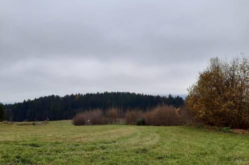 Landwirtschaftliche Wiesen 7.215 m² im Tal gelegen Fresach