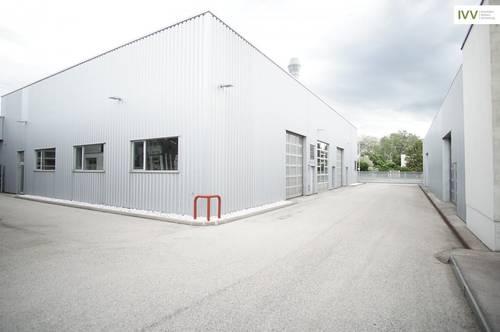 Betriebsliegenschaft im IZ Wiener Neudorf