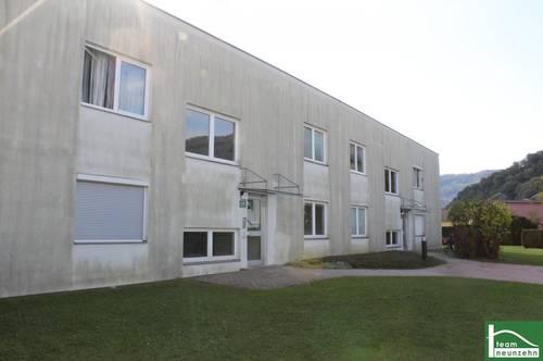 Top sanierte 2-Zimmer-Wohnung mit Terrasse! Zentrale Lage! Ab sofort beziehbar!