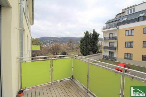 Die Weinberge vor der Türe - Ruhelage - 3 Zimmer mit Balkon - Abstellraum - Küche getrennt uvm.