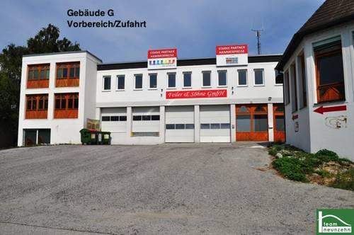 !Gewerbepark Donnerskirchen! Lager, Werkstatt, Büro, Geschäft! Ab 25€ Netto/Monat! 10m2 - 1500m2! Nähe zum Neusiedler See