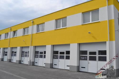 Sehr gut gelegene Büros in Fischamend NEUBAU mit Klimaanlage und Lift - Neubau für Kleinunternehmer gut geeignet