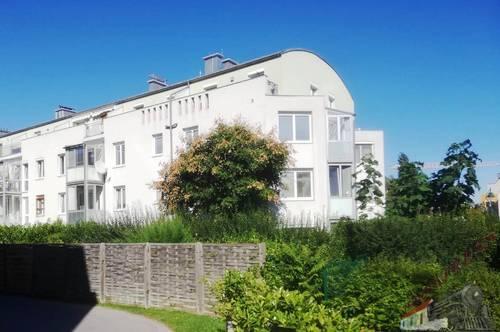 Leistbare Wohnung nahe Bhf Mödling - 3 Zimmer+Lggia+Garage