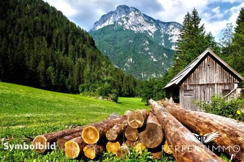 Wald und Wiesengrundstücke in Arzl im Pitztal