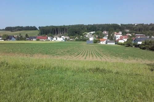 Bad Tatzmannsdorf: Traumhafte Baugrundstücke in Ruhelage!