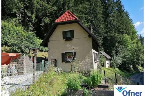 Gepflegtes Wohnhaus mit Waldgrundstück am Fuße des Gaberls