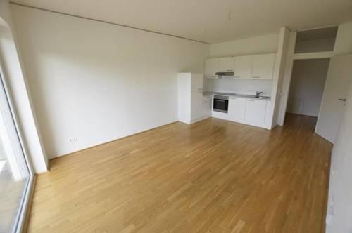 Jakomini - 50m² - 2 Zimmer - Pärchenwohnung - TOP Zustand - Südterrasse mit Blick auf den Styria Park
