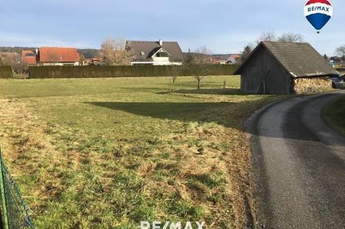 Schönes, ebenes Grundstück (Widmung BW) mit Scheune im Süd-Burgenland!