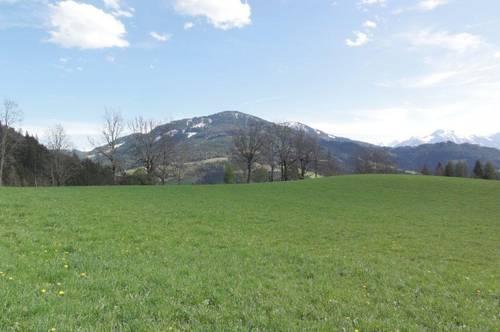 GRÜN-/ WEIDELAND - WALDFLÄCHE - SONNENLAGE & BERGPANORAMA - Landwirtschaftliche Nutzfläche in Werfenweng - Skiregion Werfenweng & amadé