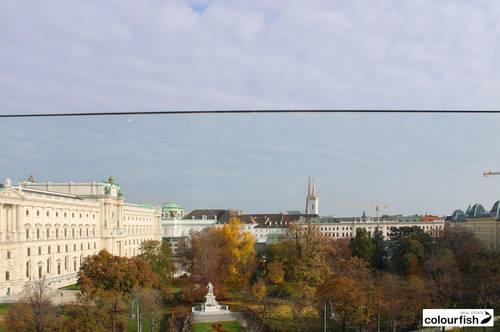 Blick auf den Burggarten - Herrliche Altbauwohnung!
