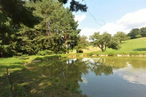 2 Fischteiche + 1 Fischerhütte + 100% Natur! Beste Wasserqualität! Naturschutzgebiet!