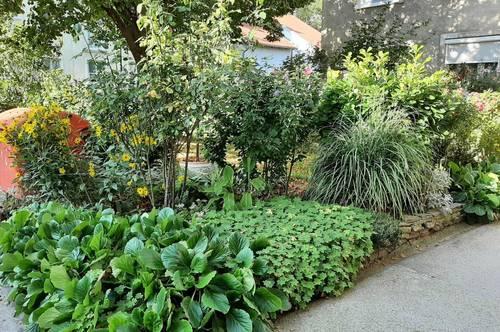 Schwechat Mietwohnung - 2 sonnendurchflutete Zimmer mit Blick in den liebevoll begrünten Garten