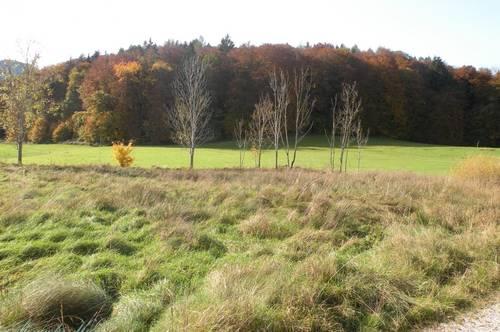 Grundstück in Großgmain