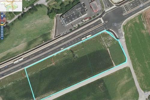 Betriebsbaugrund auf Basis Baurecht direkt an der B 1  7000  oder 12.000 m2