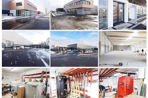 Halle, Büro- bzw. Ausstellungstrakt   Hallen ab  500 m2 bis  1300 m2 !!