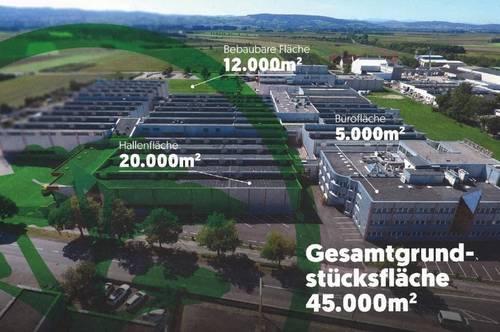 17.000 m2 Hallenkomplex plus viel Büro-auch für eine Produktion geeignet