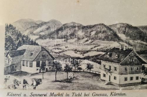 Individuelles Wohnen - Großfamilie? Himmelberg im Bezirk Feldkirchen