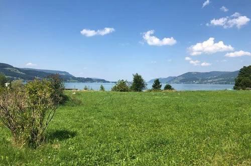 """""""Leben am See"""" Neubauwohnung direkt am Attersee"""