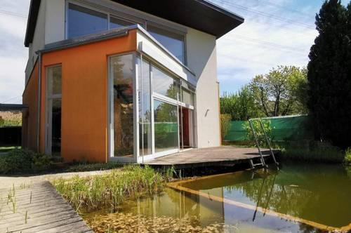 Modernes Architektenhaus mit Schwimmbiotop