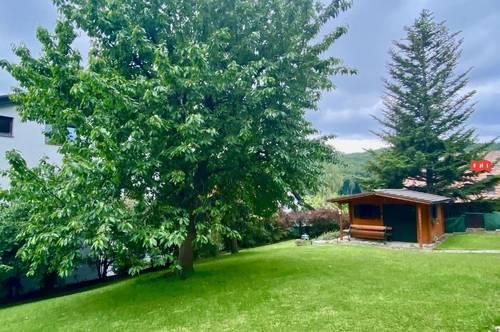 Renovierte Wohnung mit Terrasse in Grünruhelage
