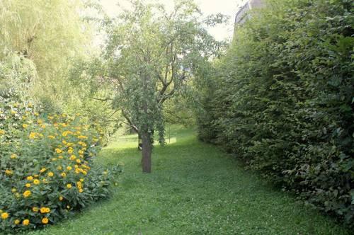 Harmonische Ruheoase mit sonnigem Garten